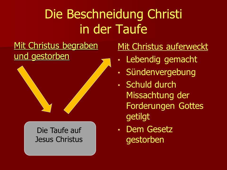 Die Beschneidung Christi in der Taufe