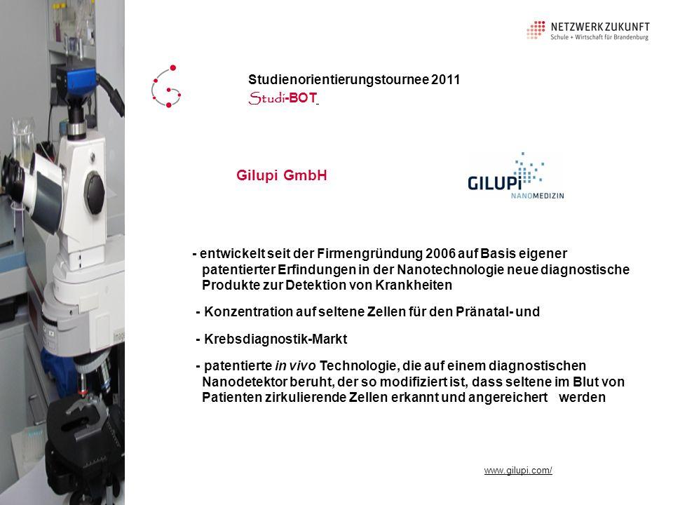 Gilupi GmbH Studienorientierungstournee 2011 Studi-BOT
