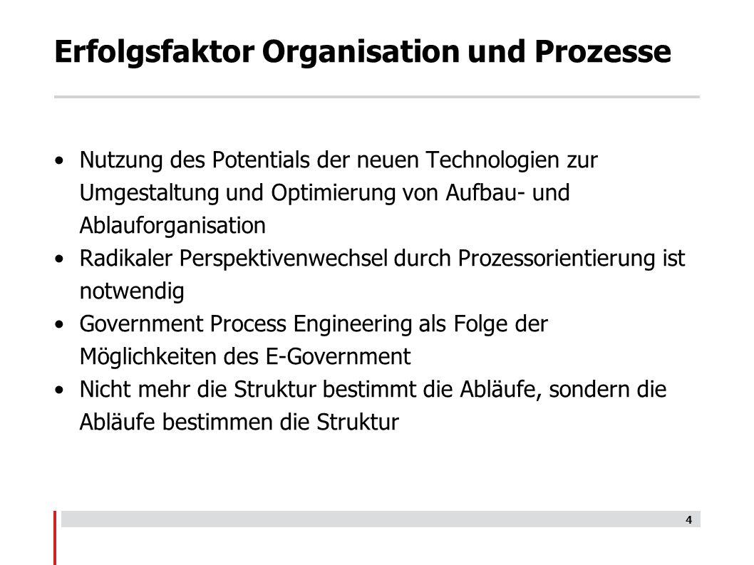 Erfolgsfaktor Organisation und Prozesse