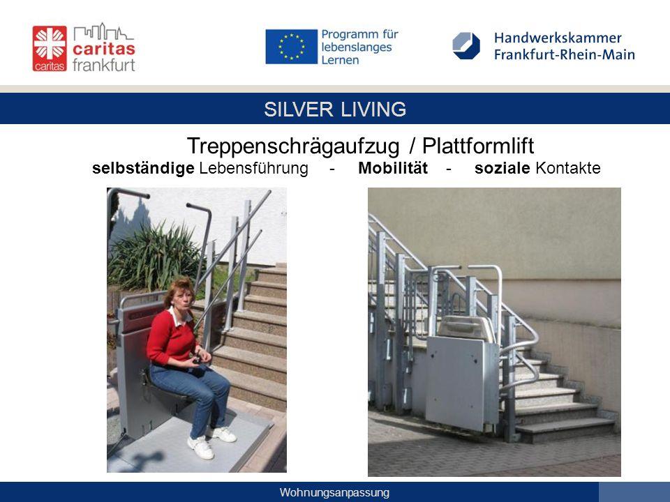 Treppenschrägaufzug / Plattformlift