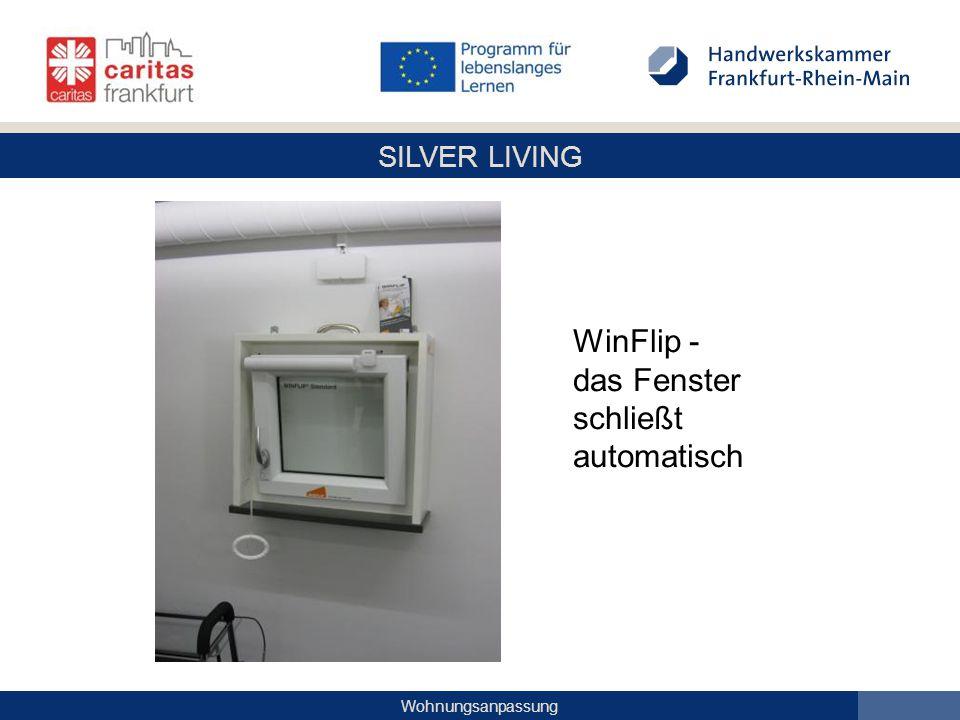 WinFlip - das Fenster schließt automatisch