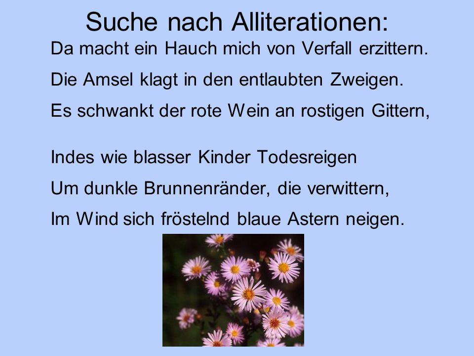 Suche nach Alliterationen: