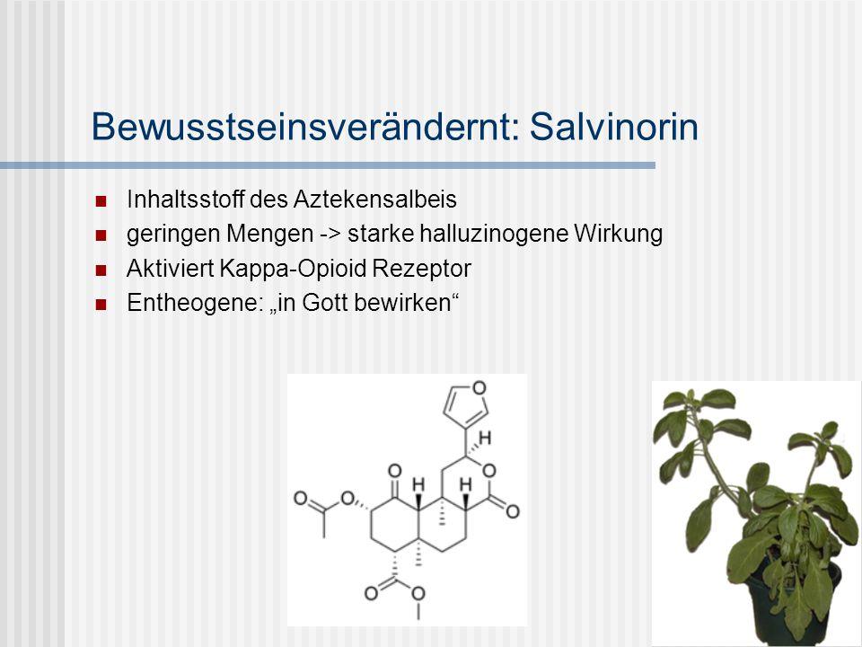 Bewusstseinsverändernt: Salvinorin