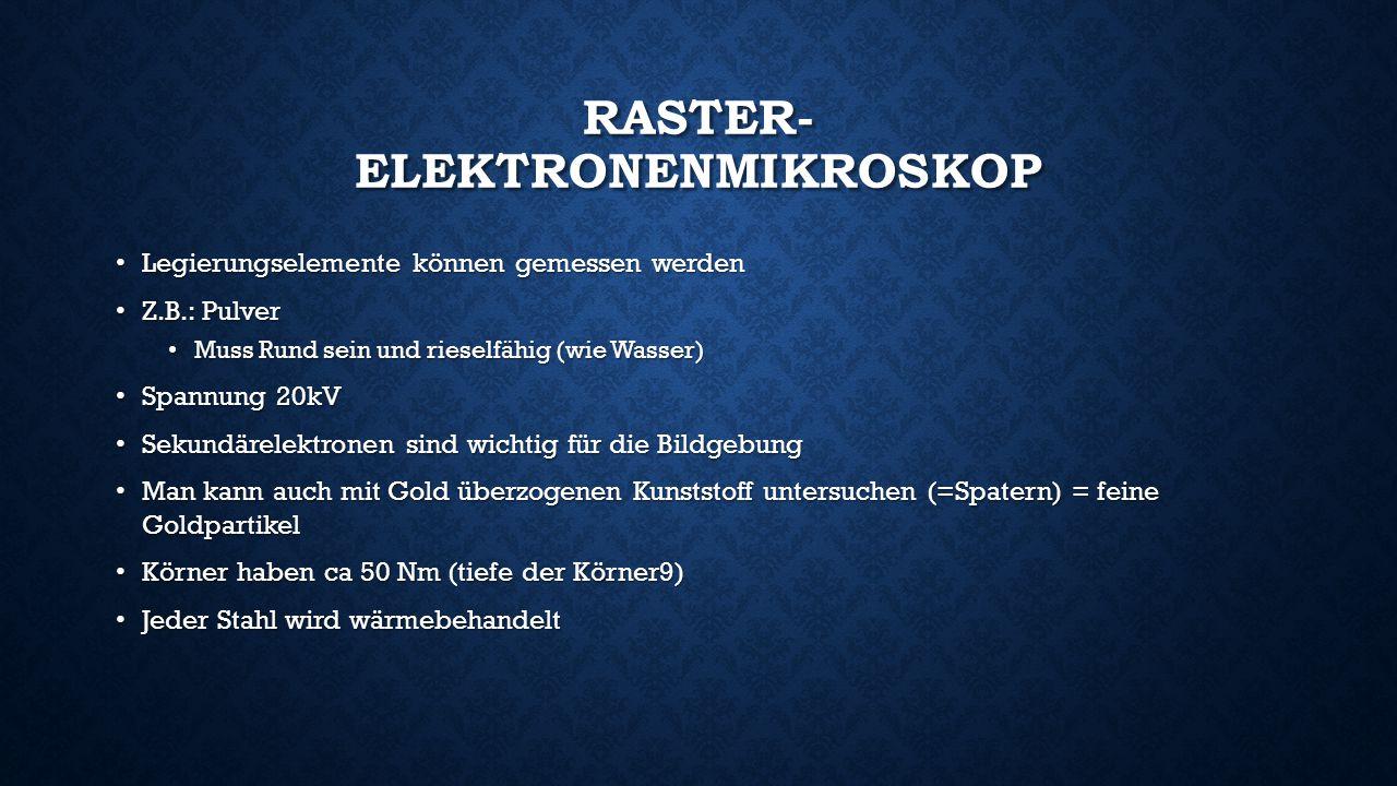 Raster- Elektronenmikroskop