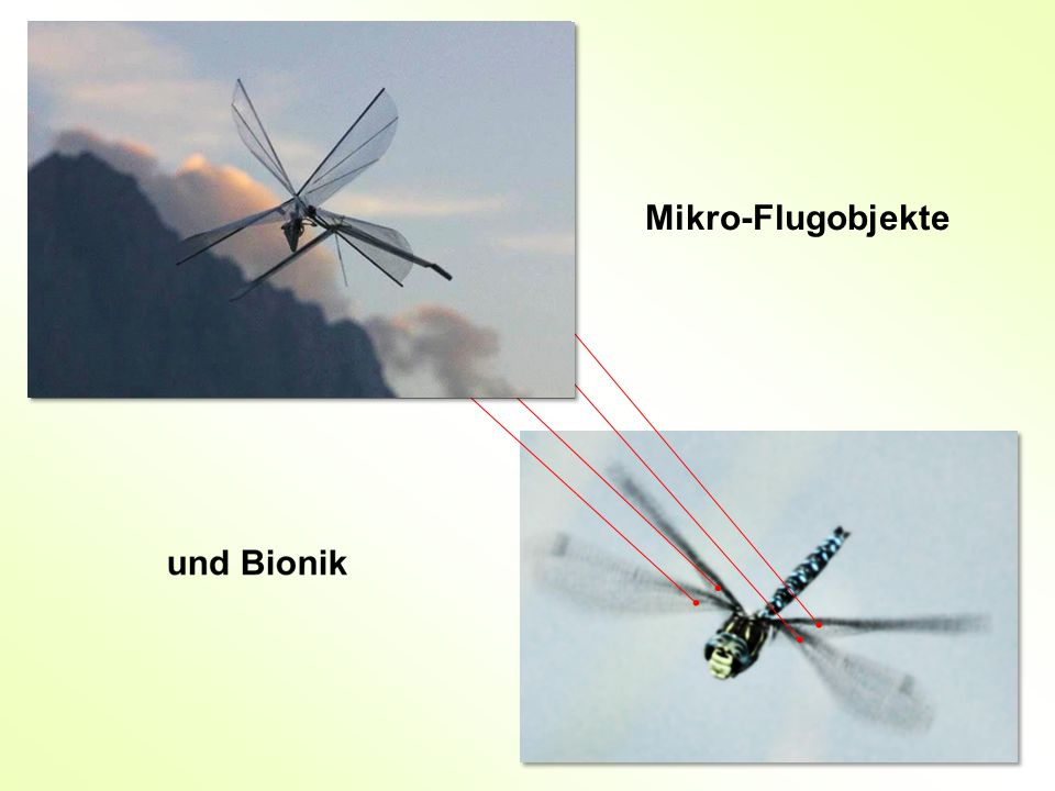 Mikro-Flugobjekte