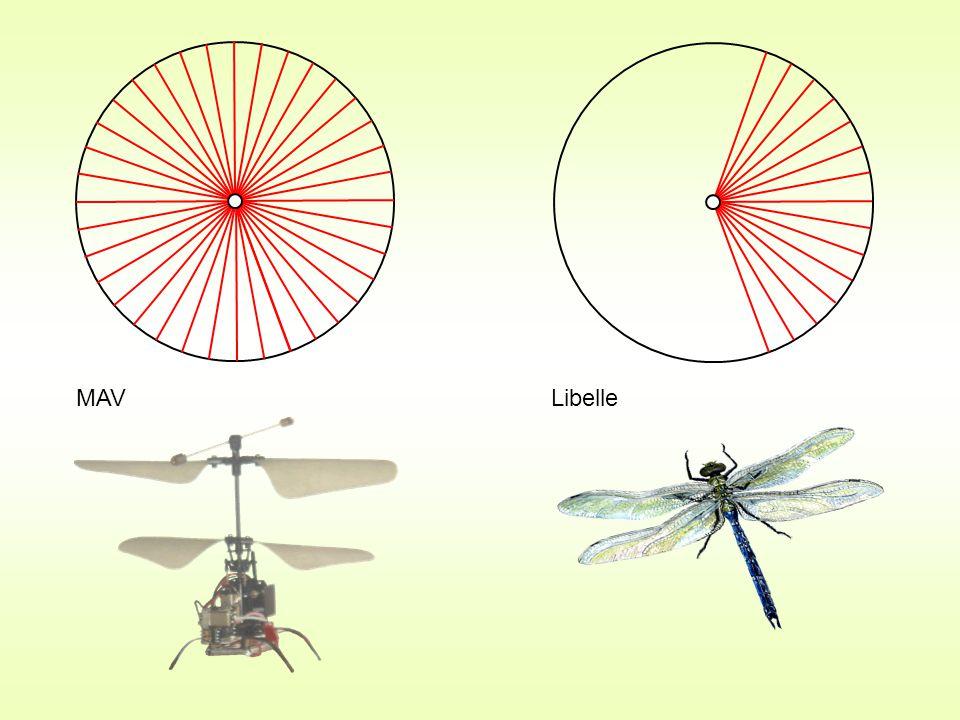 MAV Libelle