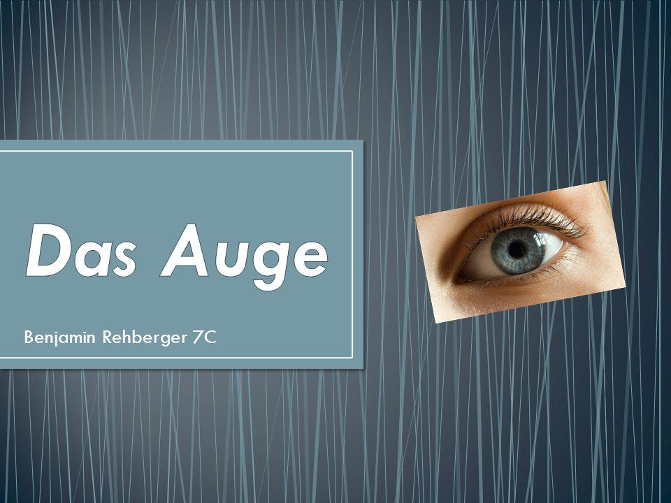 Das Auge Benjamin Rehberger 7C