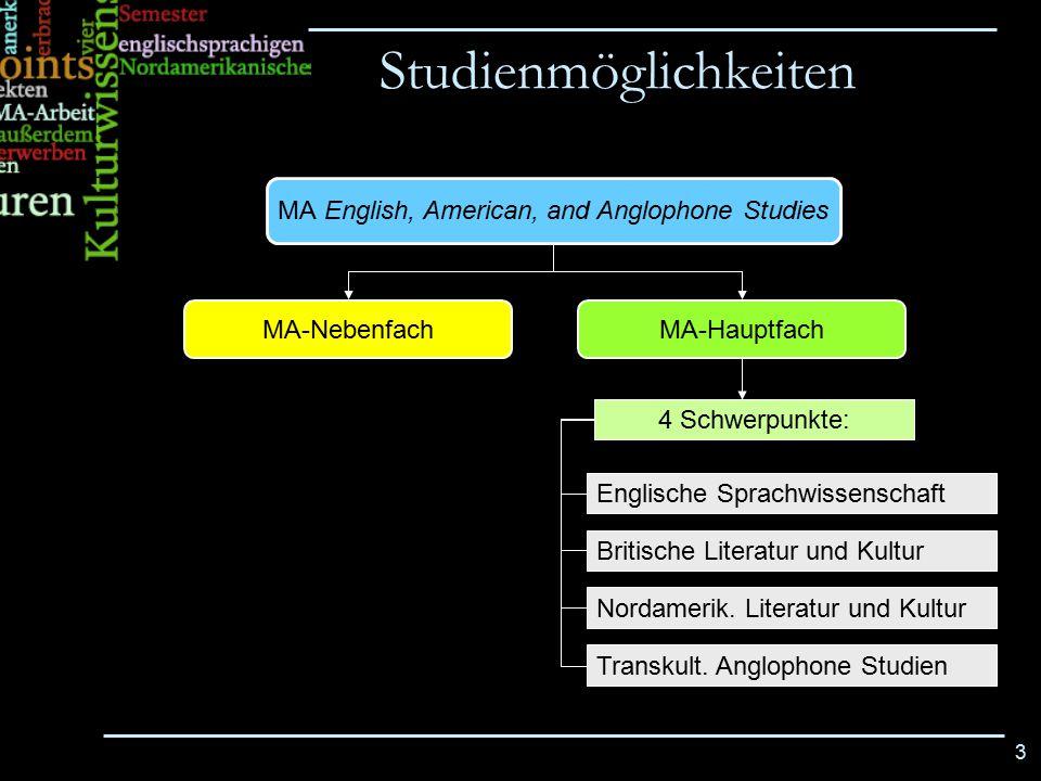 MA English, American, and Anglophone Studies