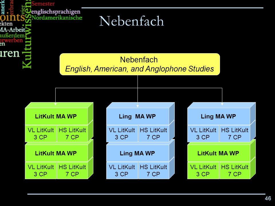 English, American, and Anglophone Studies