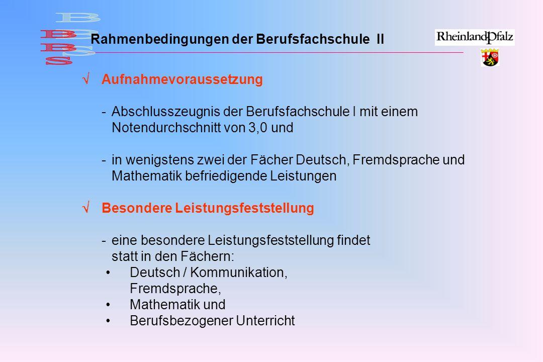 Rahmenbedingungen der Berufsfachschule II