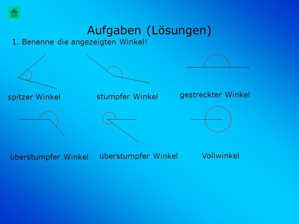 Aufgaben (Lösungen) 1. Benenne die angezeigten Winkel!
