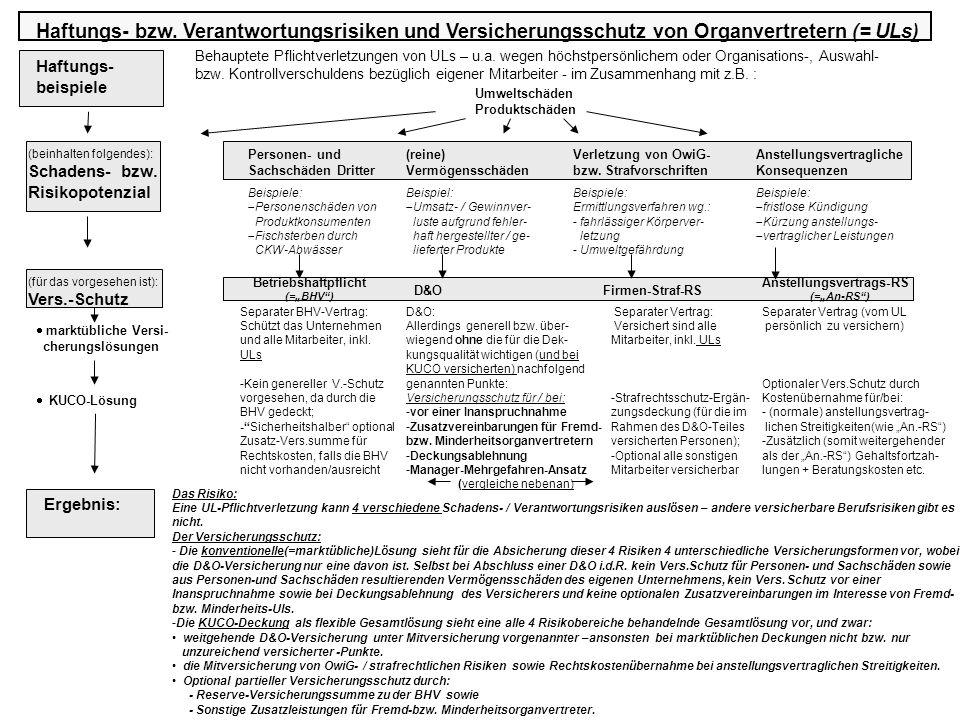 Haftungs- bzw. Verantwortungsrisiken und Versicherungsschutz von Organvertretern (= ULs)