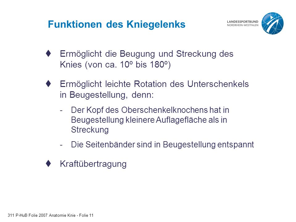 Funktionen des Kniegelenks