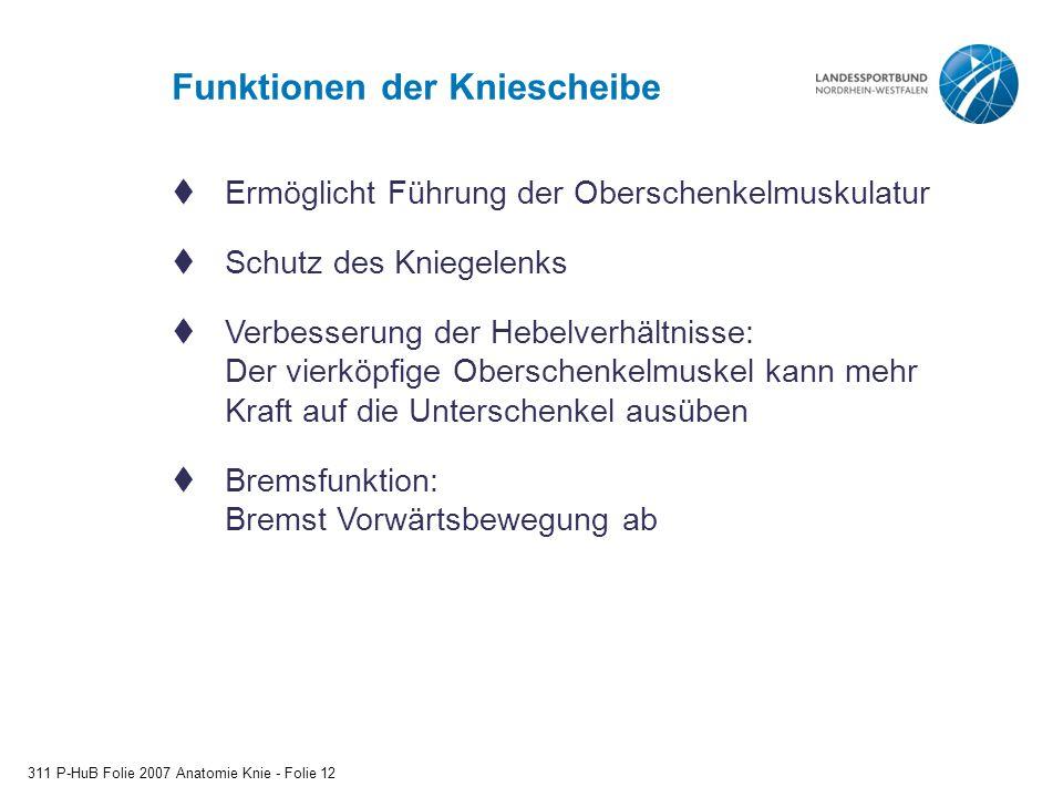 Funktionen der Kniescheibe