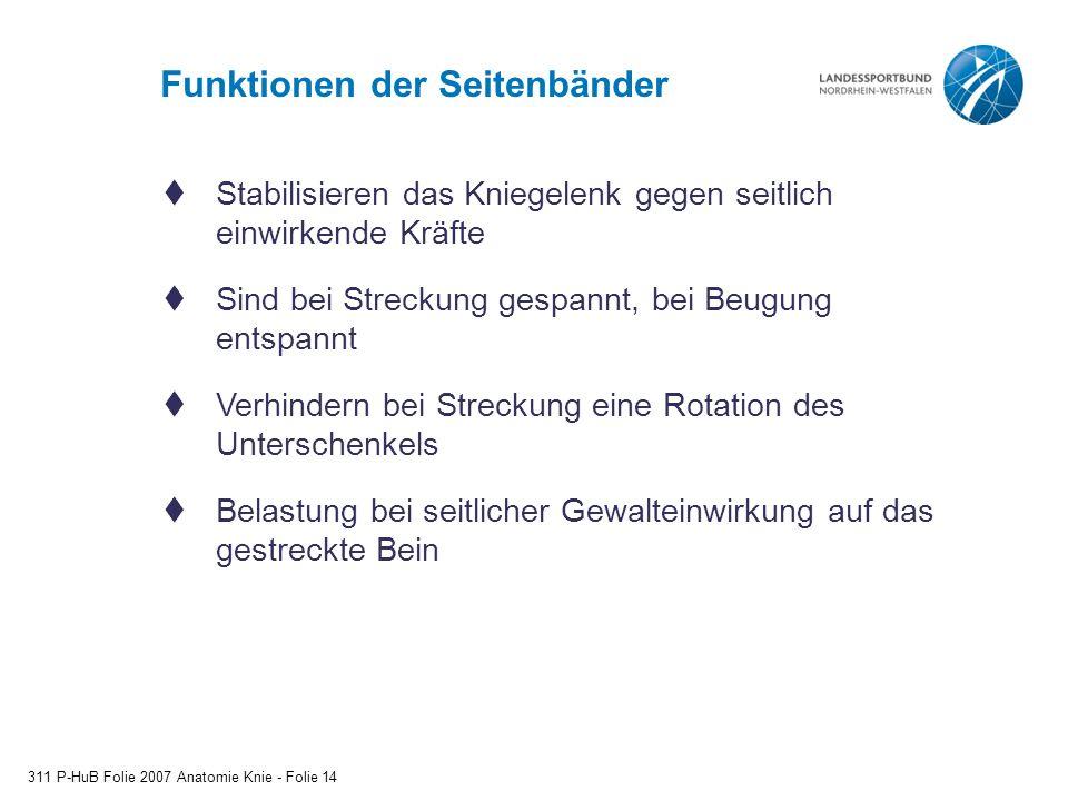 Großartig Definition Der Beugung In Der Anatomie Ideen - Anatomie ...