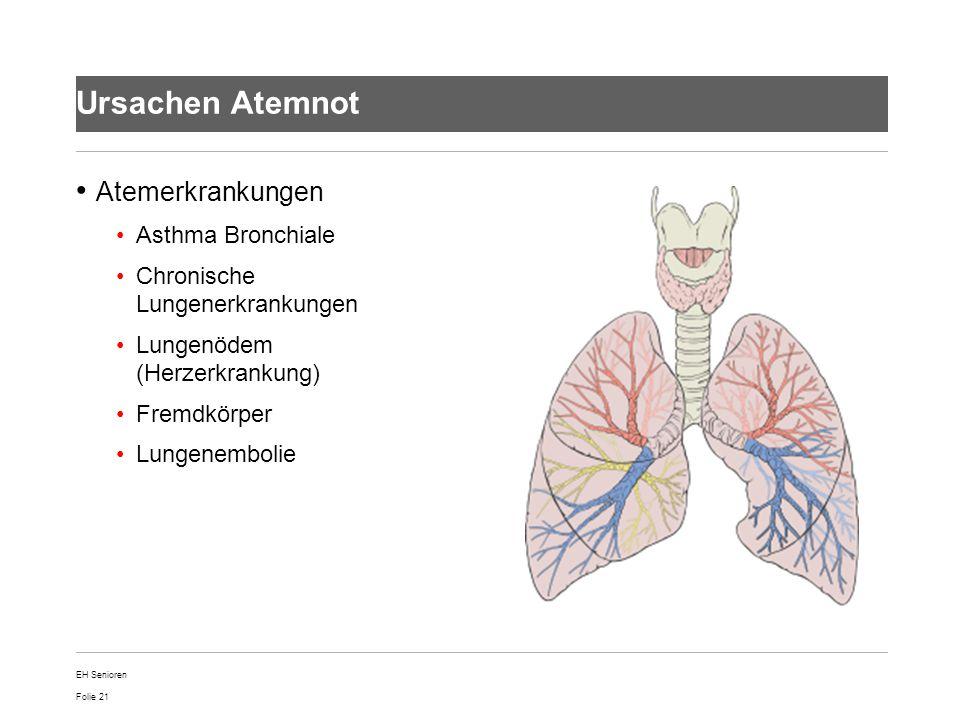 Ursachen Atemnot Atemerkrankungen Asthma Bronchiale