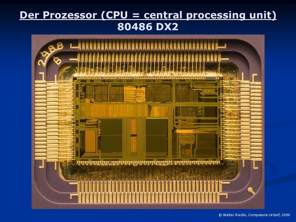Der Prozessor (CPU = central processing unit) 80486 DX2