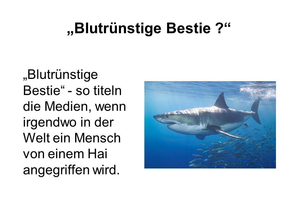 """""""Blutrünstige Bestie"""