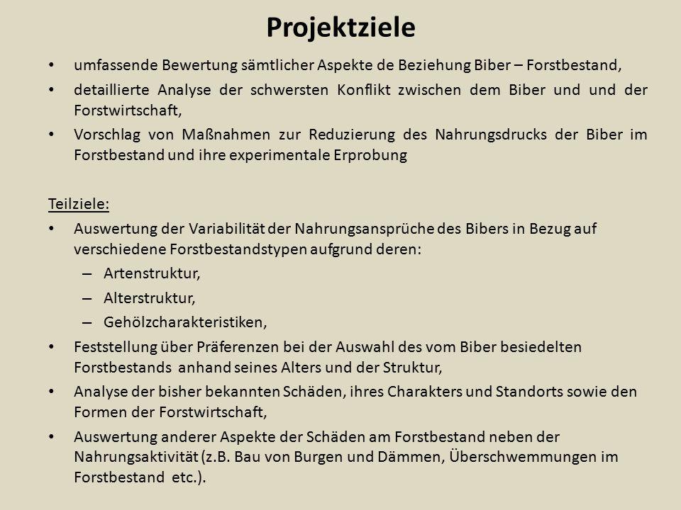 Projektziele umfassende Bewertung sämtlicher Aspekte de Beziehung Biber – Forstbestand,