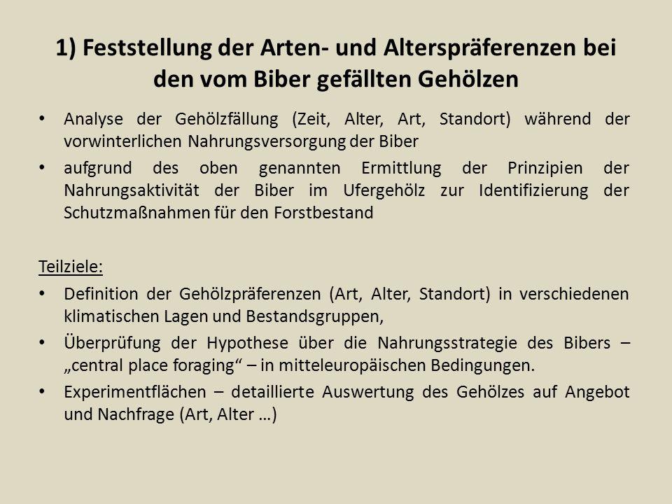 1) Feststellung der Arten- und Alterspräferenzen bei den vom Biber gefällten Gehölzen