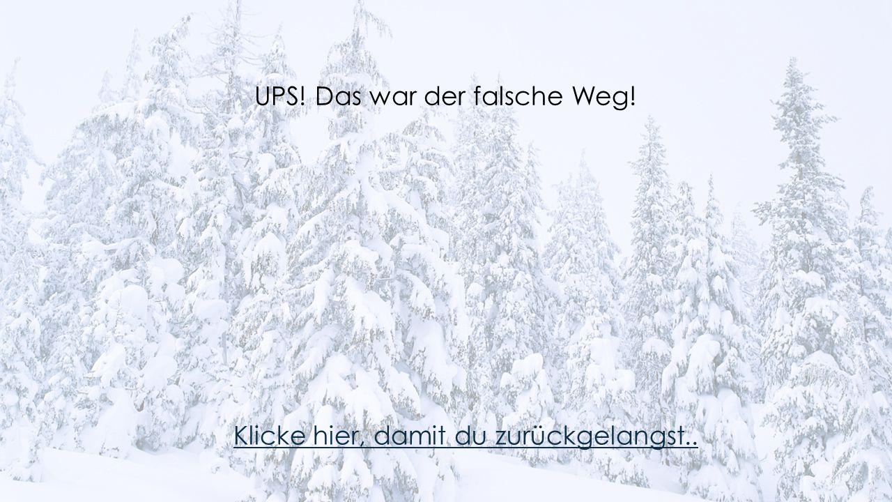UPS! Das war der falsche Weg!