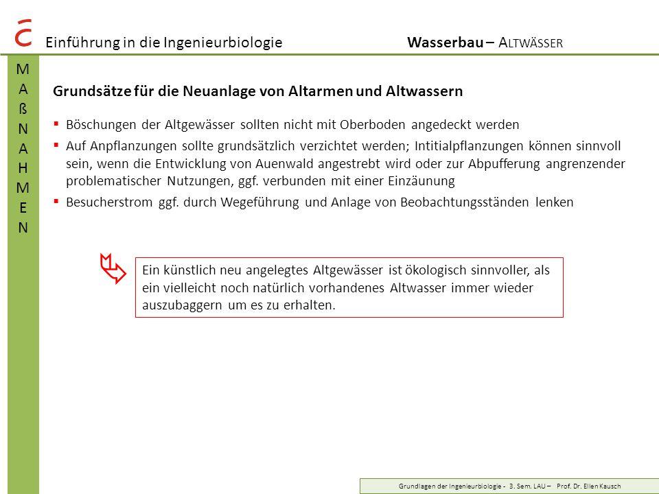  Einführung in die Ingenieurbiologie Wasserbau – Altwässer M A ß