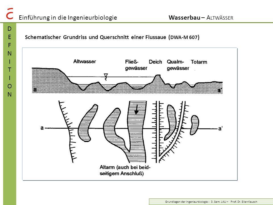 Einführung in die Ingenieurbiologie Wasserbau – Altwässer