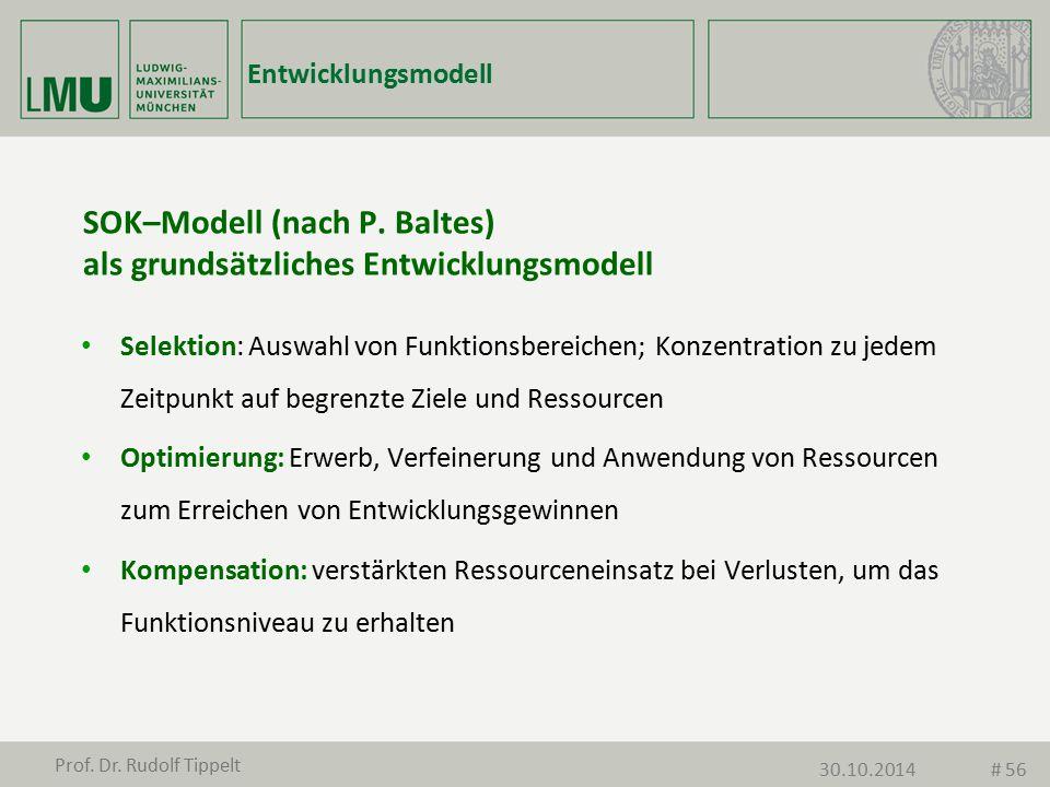SOK–Modell (nach P. Baltes) als grundsätzliches Entwicklungsmodell