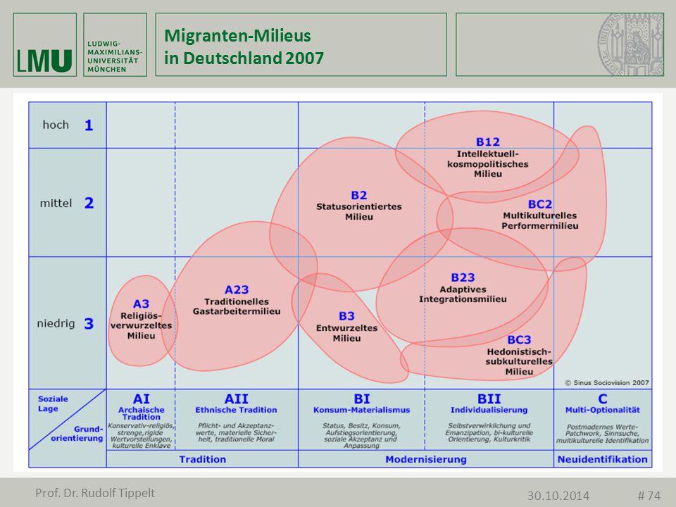 Migranten-Milieus in Deutschland 2007
