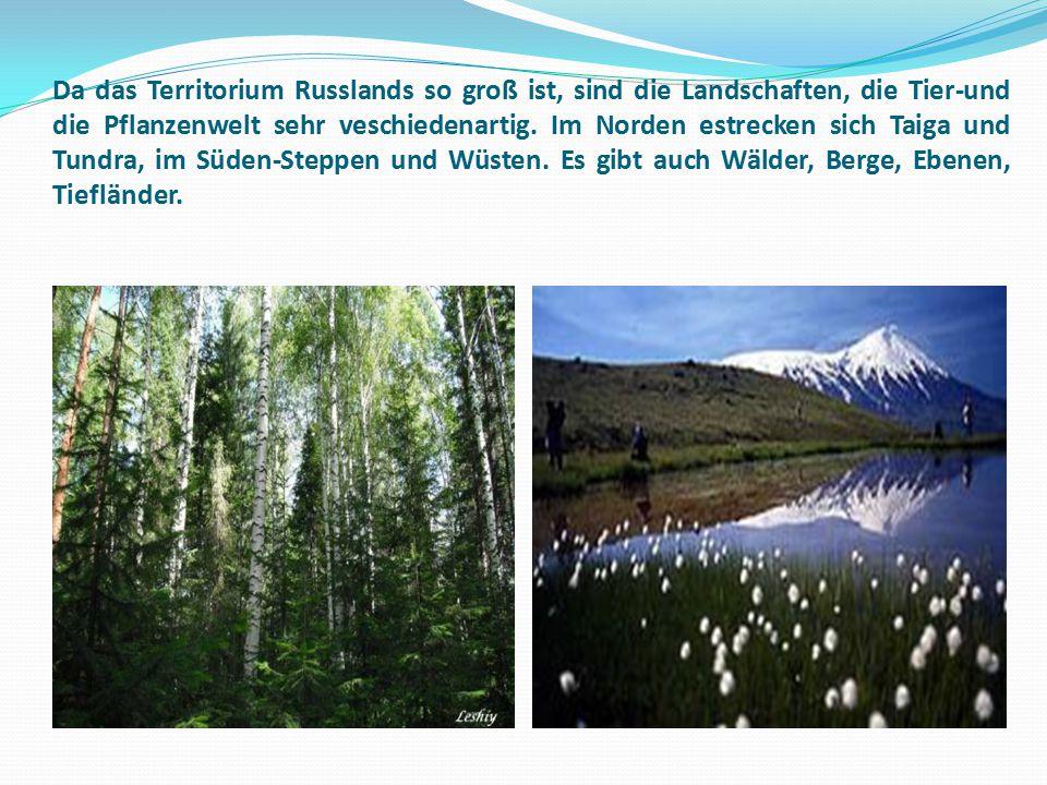 Da das Territorium Russlands so groß ist, sind die Landschaften, die Tier-und die Pflanzenwelt sehr veschiedenartig.
