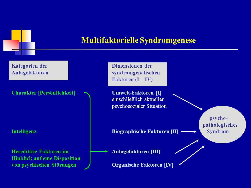 Multifaktorielle Syndromgenese