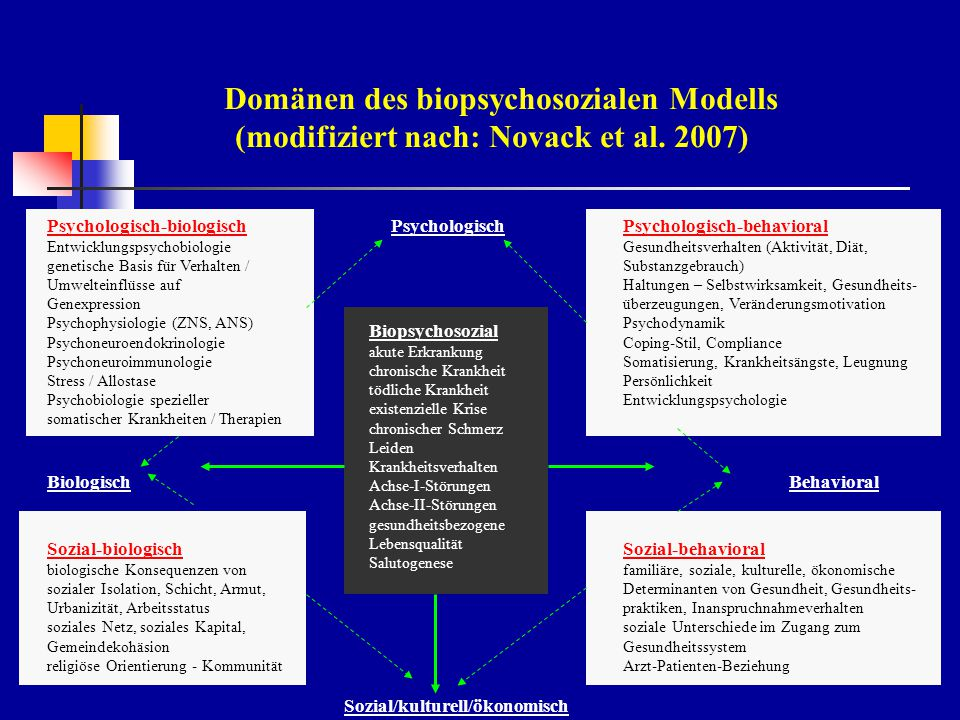 Domänen des biopsychosozialen Modells (modifiziert nach: Novack et al