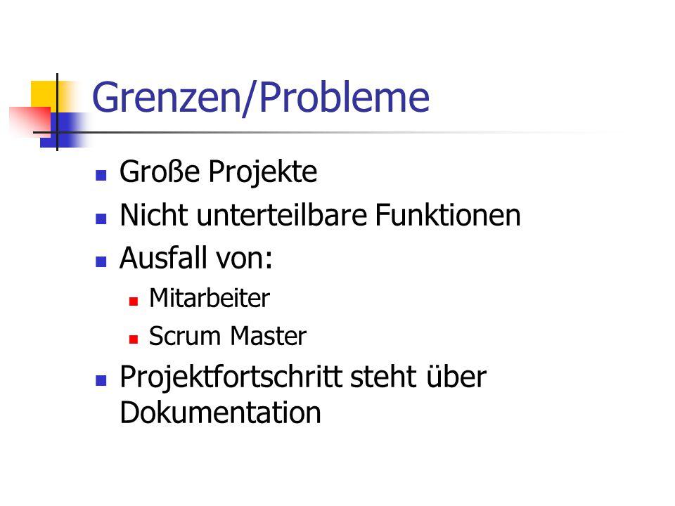 Grenzen/Probleme Große Projekte Nicht unterteilbare Funktionen