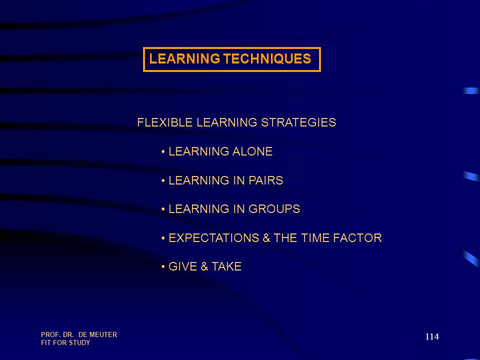 LEARNING TECHNIQUES FLEXIBLE LEARNING STRATEGIES LEARNING ALONE