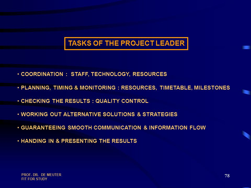 TASKS OF THE PROJECT LEADER