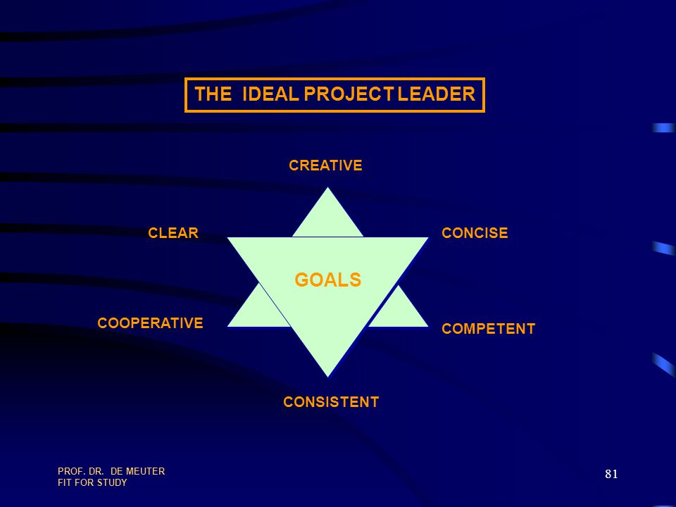 THE IDEAL PROJECT LEADER