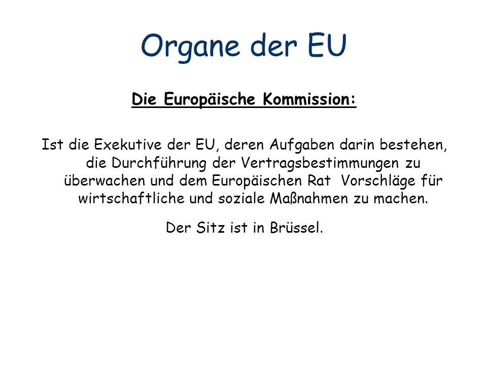 Die Europäische Kommission: