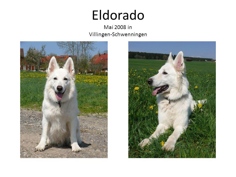 Eldorado Mai 2008 in Villingen-Schwenningen