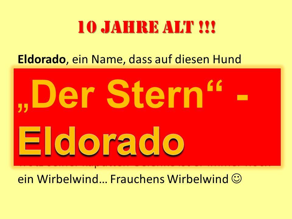 """""""Der Stern - Eldorado 10 Jahre alt !!!"""