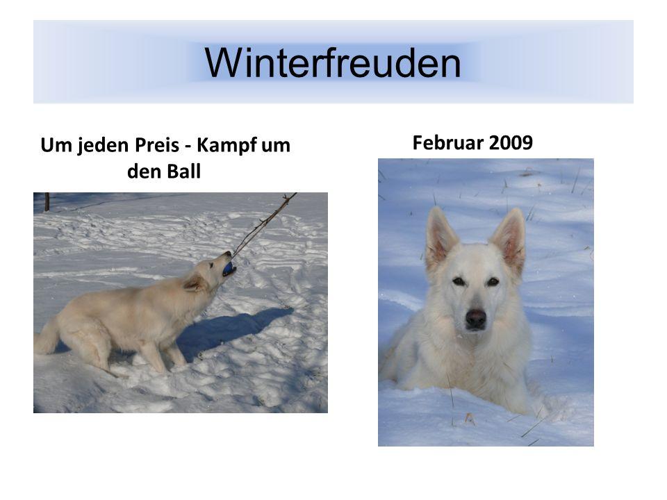 Winterfreuden Um jeden Preis - Kampf um den Ball Februar 2009