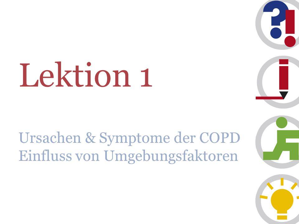 Ursachen & Symptome der COPD Einfluss von Umgebungsfaktoren