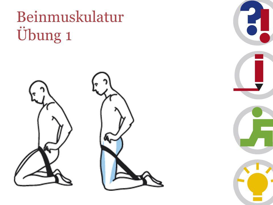 Beinmuskulatur Übung 1