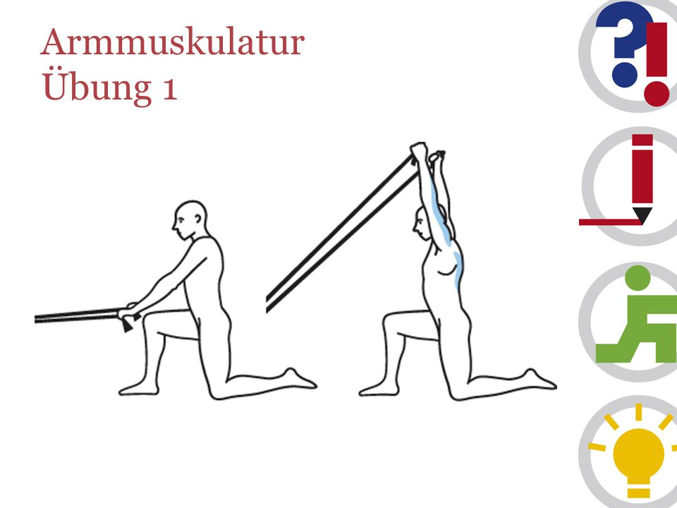 Armmuskulatur Übung 1