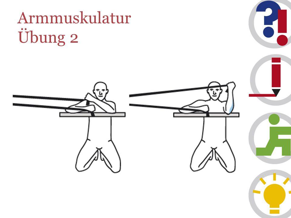 Armmuskulatur Übung 2
