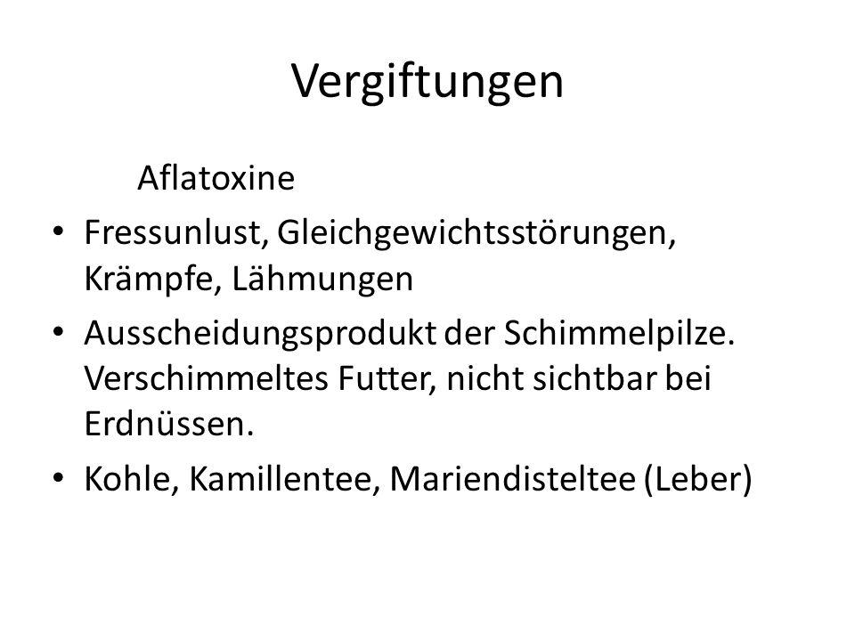 Vergiftungen Aflatoxine