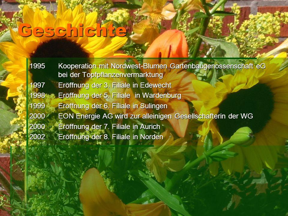 Geschichte 1995 Kooperation mit Nordwest-Blumen Gartenbaugenossenschaft eG bei der Topfpflanzenvermarktung.