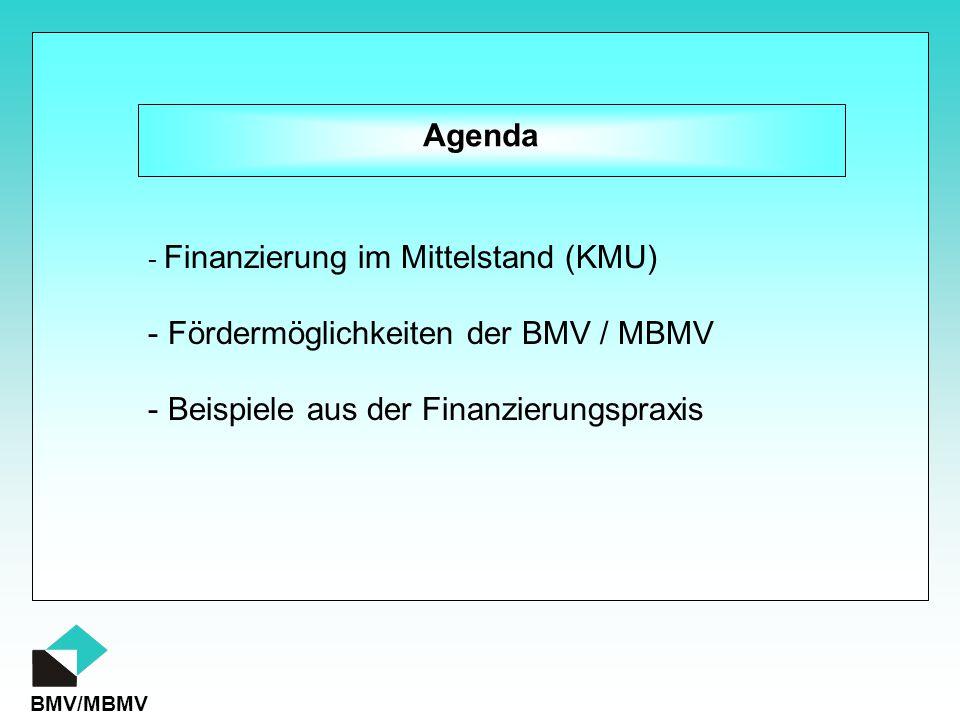 Fördermöglichkeiten der BMV / MBMV