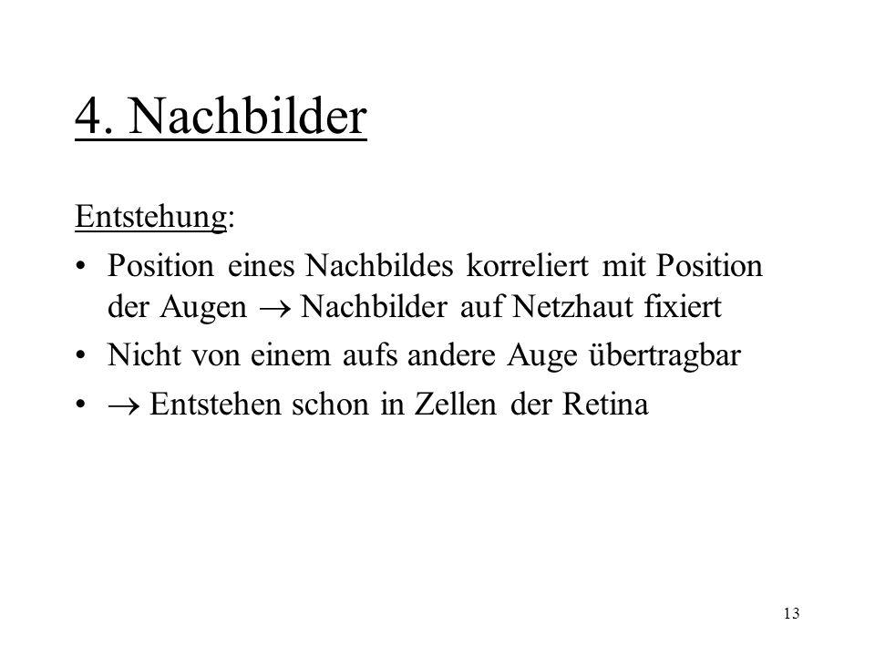 4. Nachbilder Entstehung: