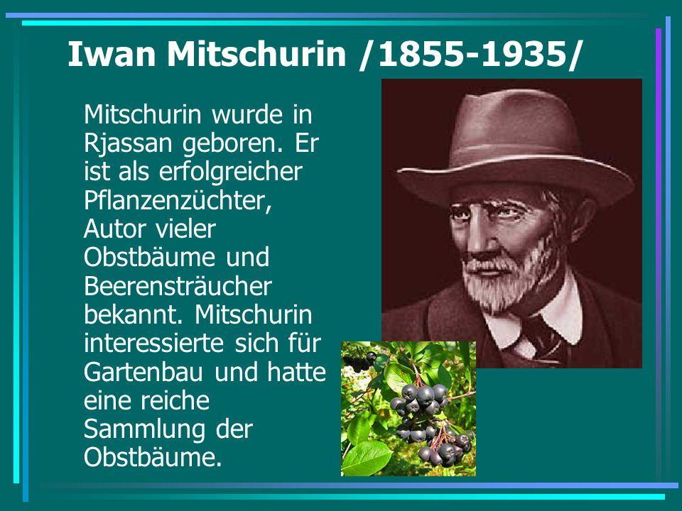 Iwan Mitschurin /1855-1935/