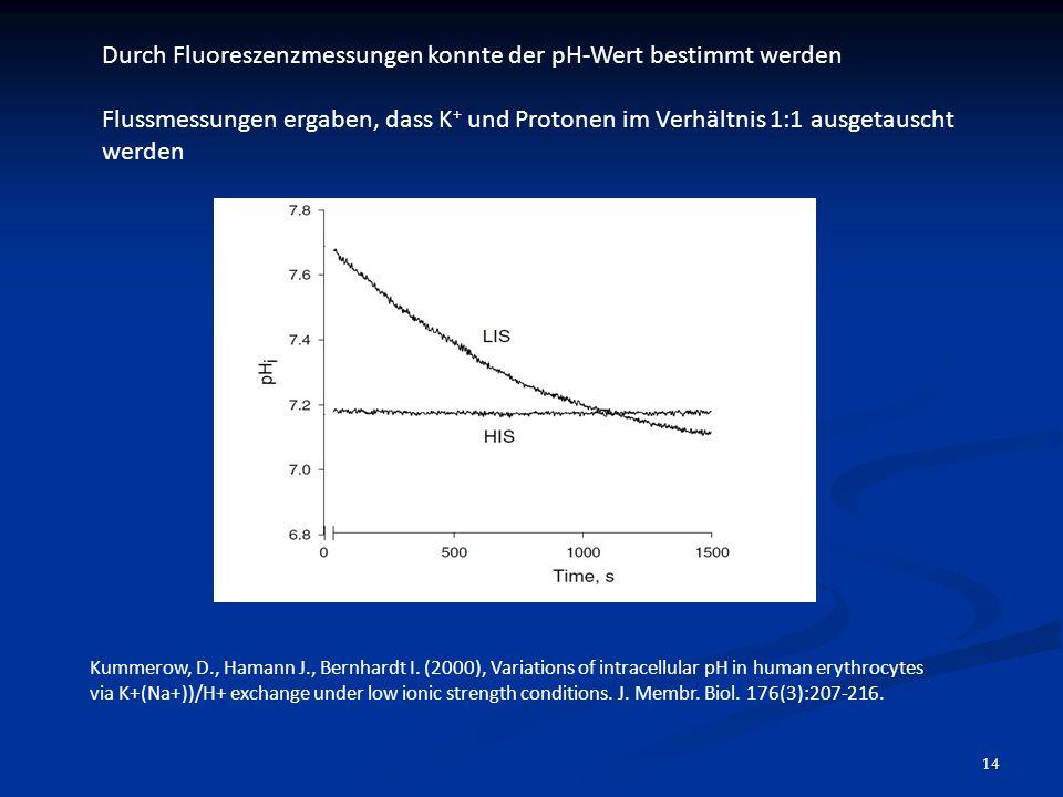Durch Fluoreszenzmessungen konnte der pH-Wert bestimmt werden